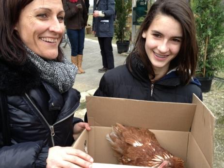 300 galline sono state adottate con 150 famiglie della Comunità dei Comuni del Canton Podensac.France Bleu immagini