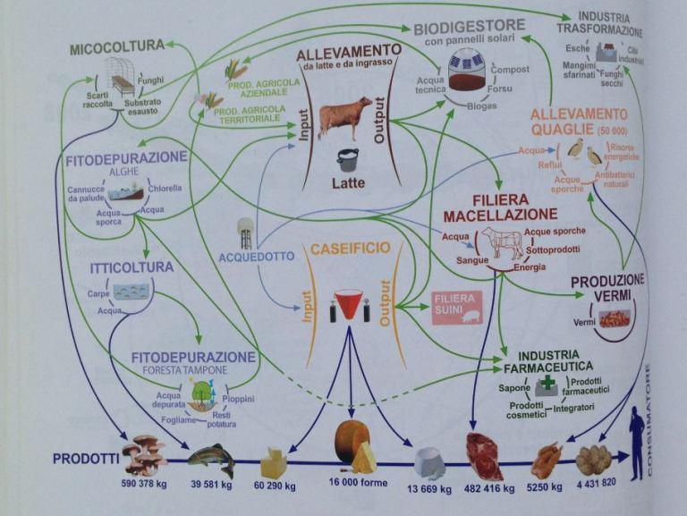 La filiera del Parmigiano Reggiano - Design Sistemico