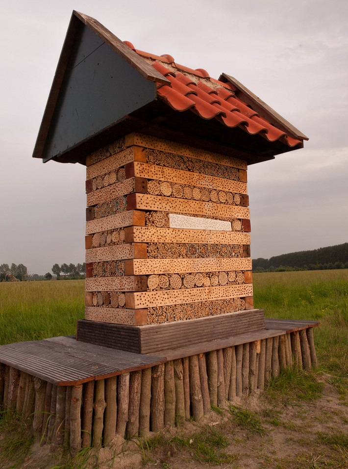29 insect hotel