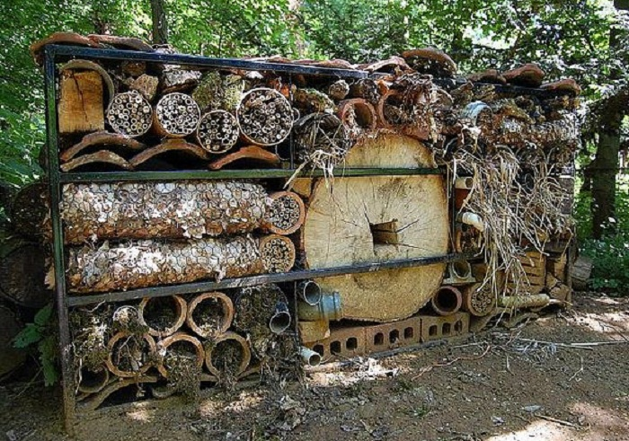 32 insect hotel