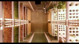 Infarm - Installazione Vista Superiore