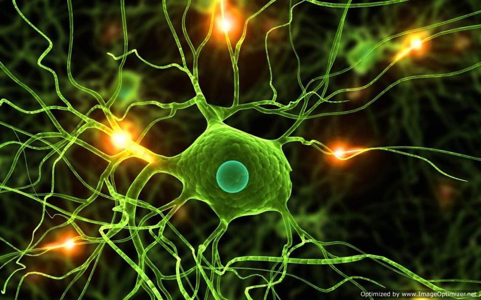 green-neuron